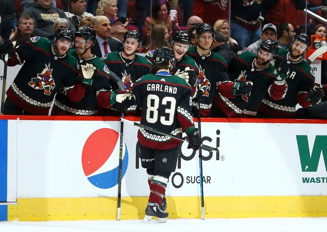 Arizona Coyotes right wing Conor Garland (83) celebrates his goal, the first in his NHL career, during the second period of an NHL hockey game against the Colorado Avalanche Saturday, Dec. 22, 2018, in Glendale, Ariz. (AP Photo/Ross D. Franklin)