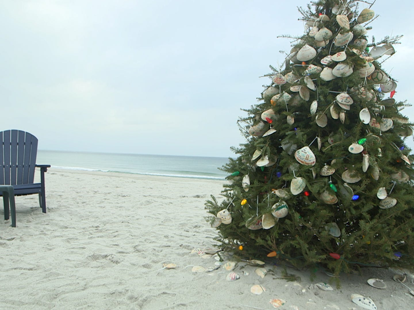 A Christmas tree sits atop the sand of Normandy Beach