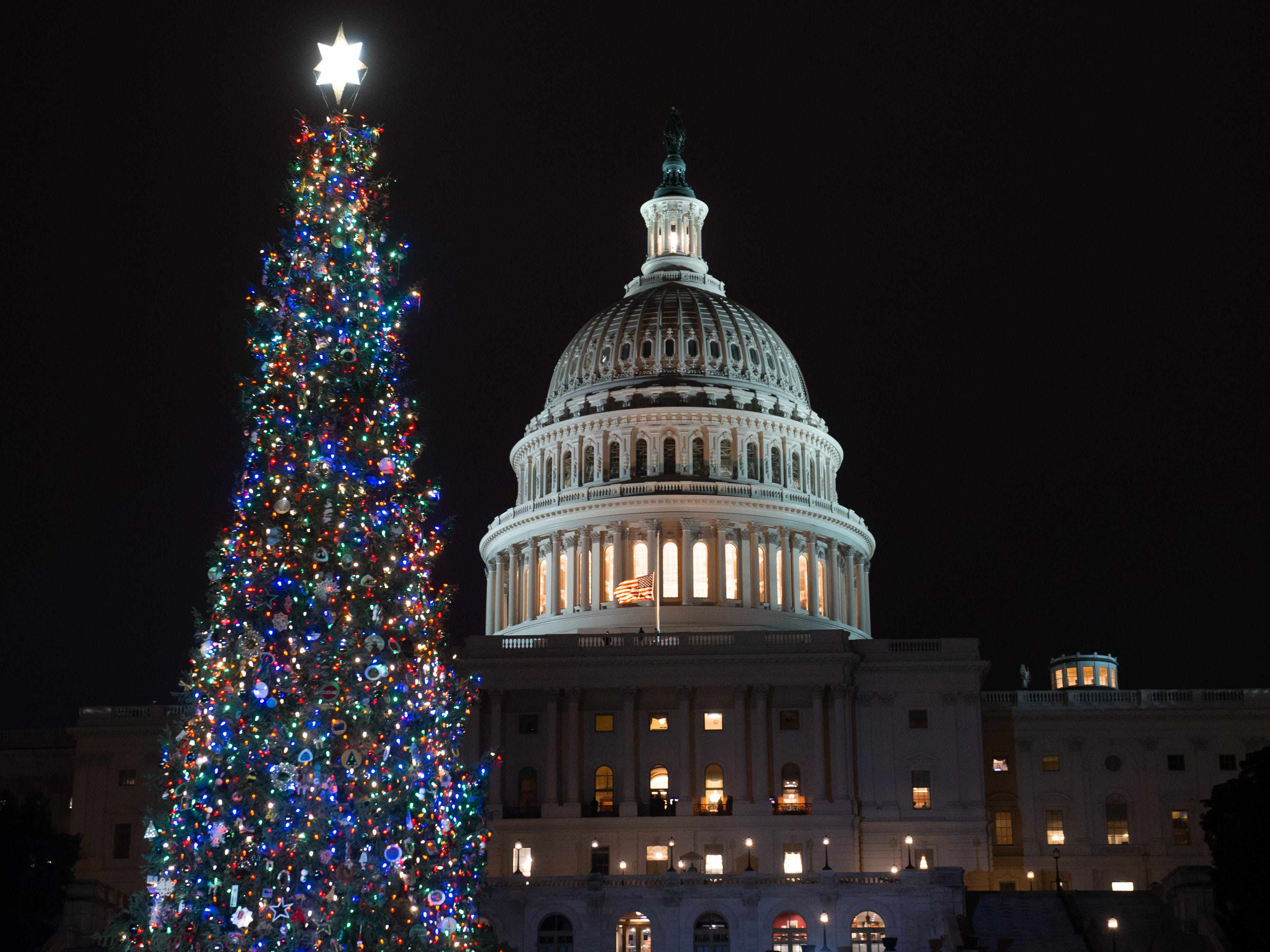 The US Capitol Christmas Tree, a Noble Fir from Oregon, is seen following a lighting ceremony on Capitol Hill in Washington, DC, December 6, 2018.