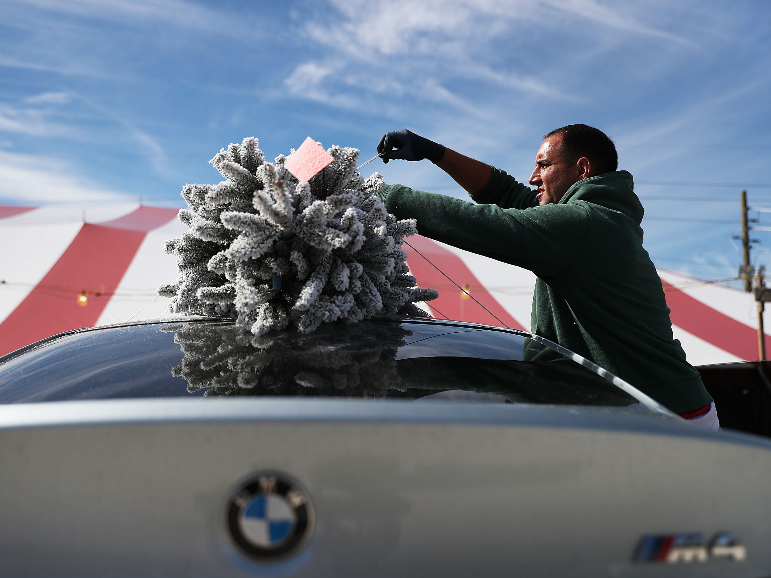 Alex Echezurio ties a Christmas tree to the top of a vehicle as he helps people buying Christmas tree at a Holiday Sale Christmas Tree lot  on November 29, 2018 in Miami, Florida.  Reports indicate that the U.S. is suffering from a  Christmas tree shortage nationwide which is causing prices of trees to go up.