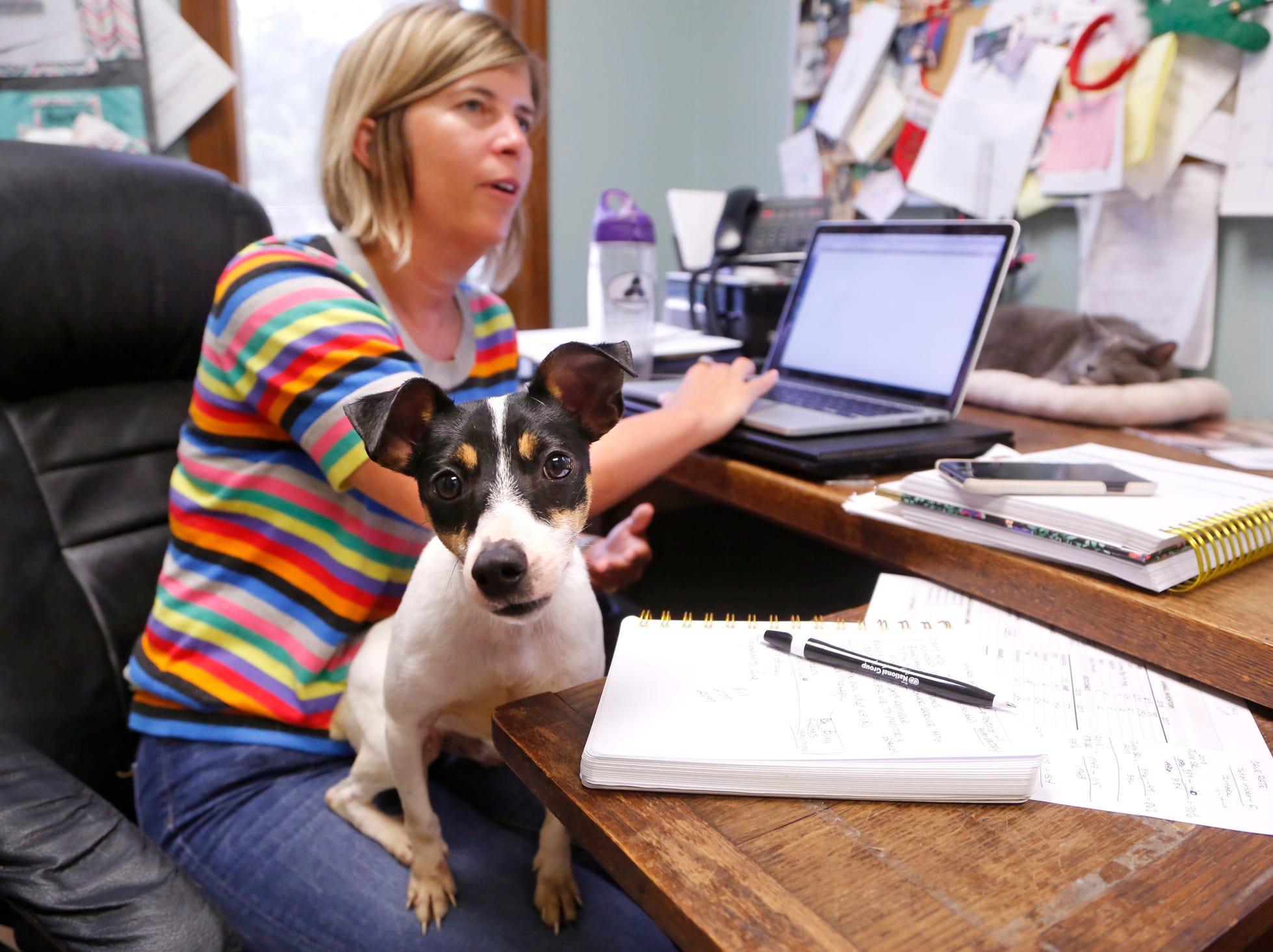 "Executive director Stacy Rogers, background, discusses overcrowding issues as a fox terrier that arrived just a day earlier hops onto her lap Wednesday, July 11, 2018, at Almost Home Humane Society, 1705 S. Second Street in Lafayette. Rogers said there are currently 300 cats and 75 dogs at Almost Home. ""We have more dogs than we can handle,"" she said."