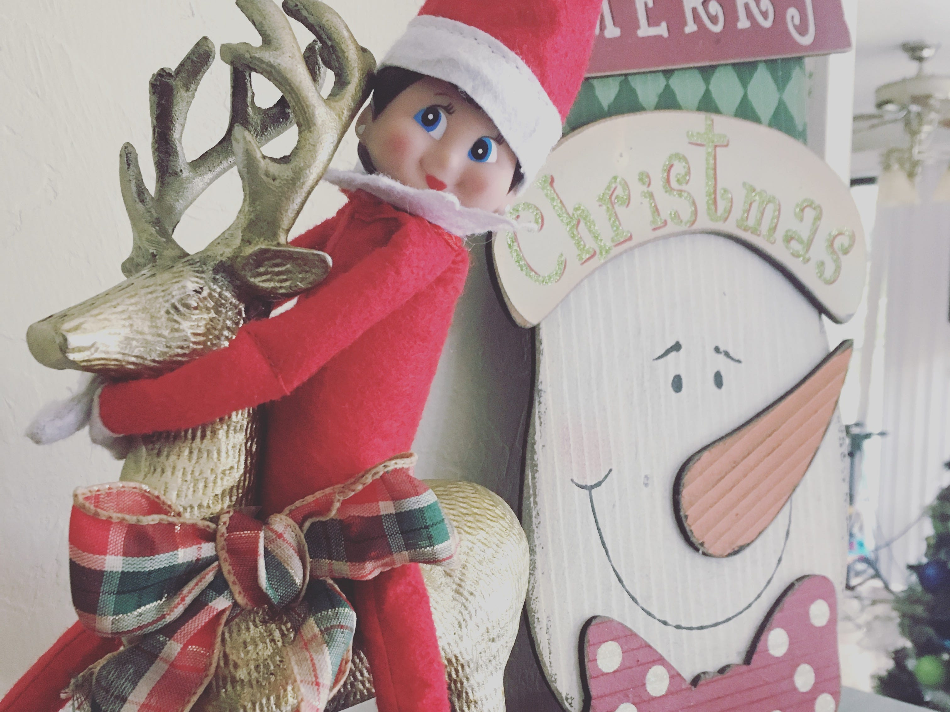 This is Ellen. Ellen is taking a ride on a reindeer and enjoying the festive décor.