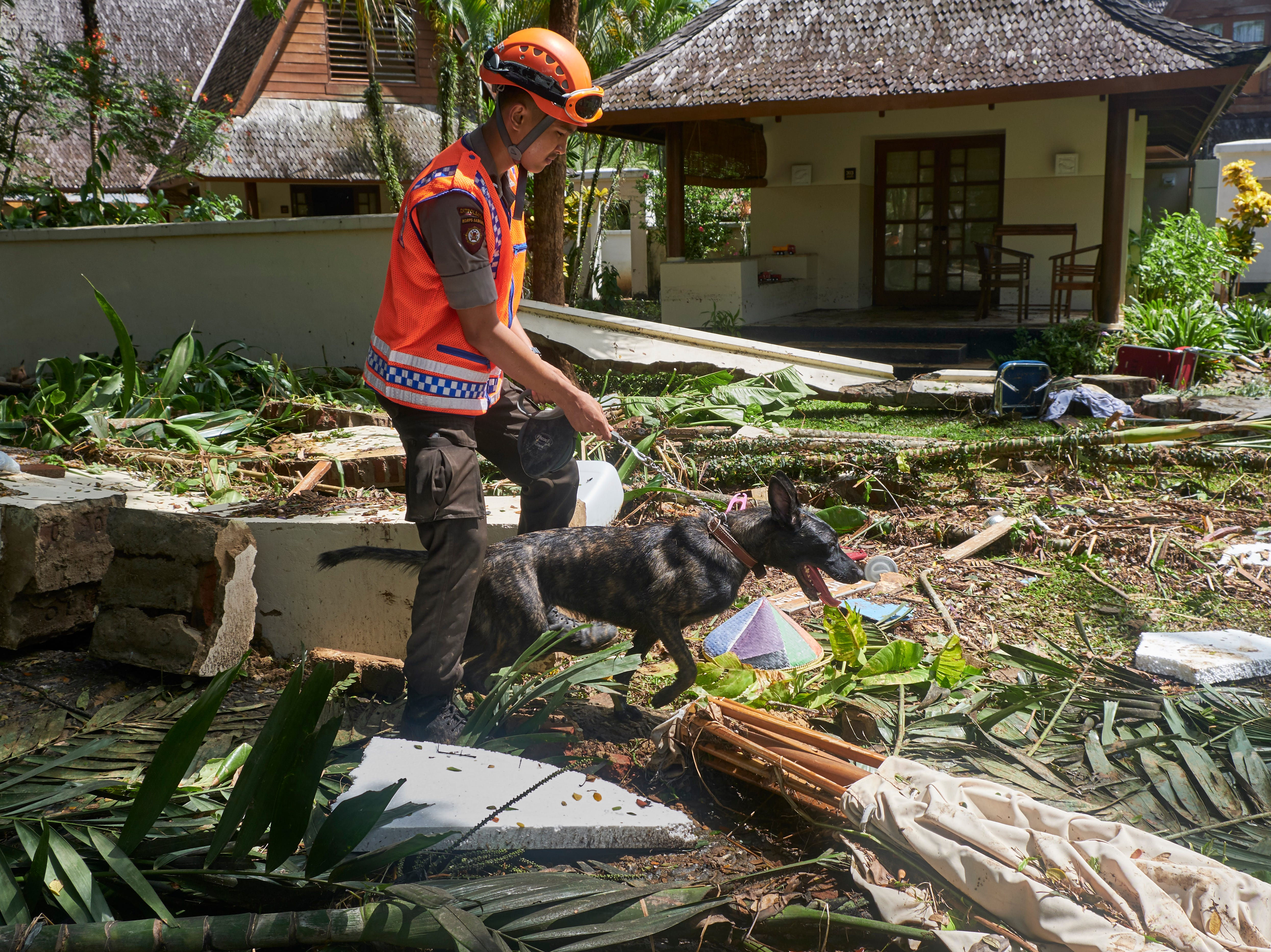 El 24 de diciembre de 2018 en Tanjung Lesung, Indonesia, un rescatista y su K-9 en villas destruidas durante una búsqueda de víctimas del tsunami en un hotel resort. Según informes, más de 220 personas murieron luego de que un tsunami provocado por un volcán azotara las costas del estrecho de Sunda en Indonesia el sábado por la noche e hirió a más de 600 personas.