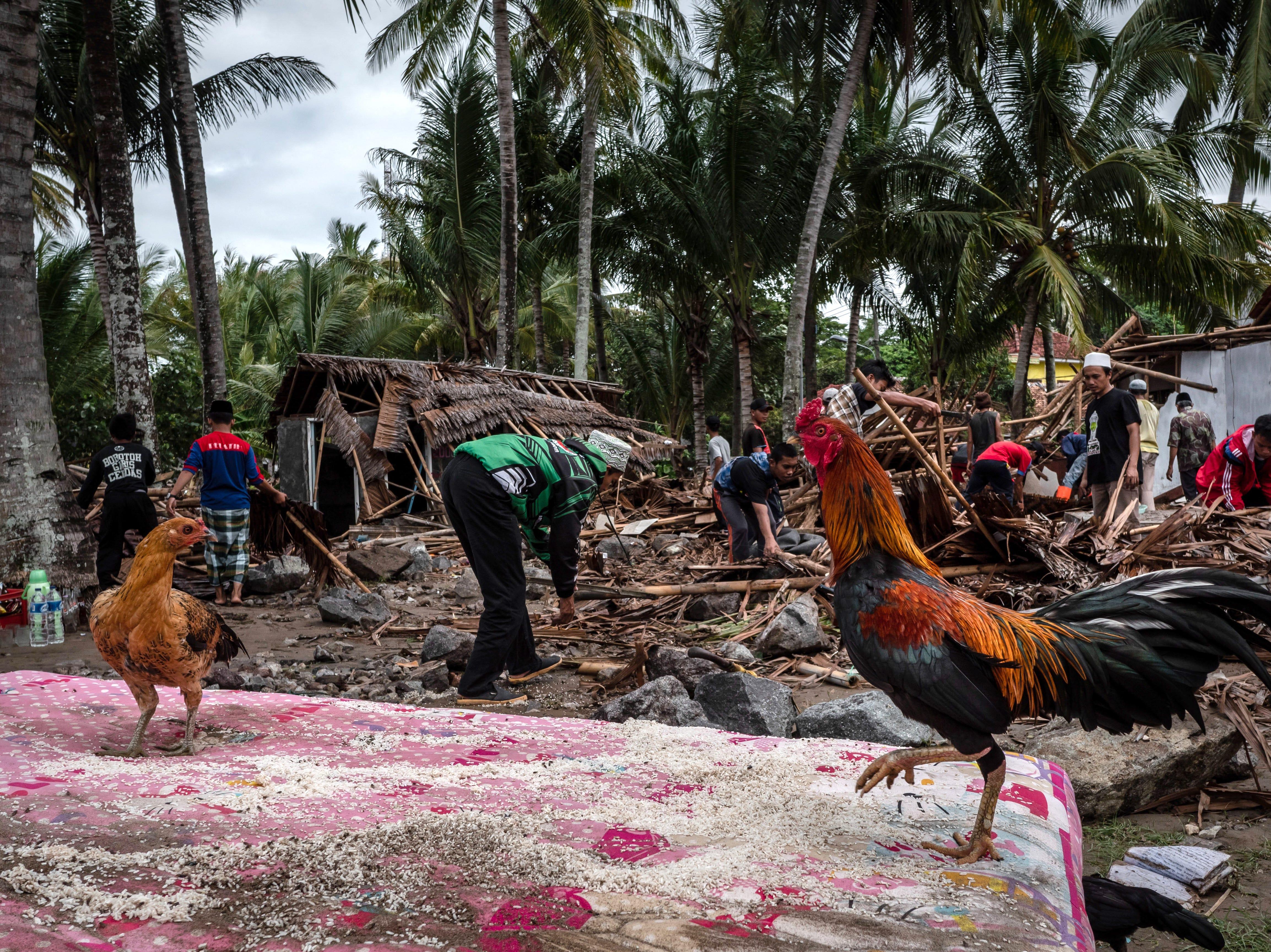 Los aldeanos buscan sus pertenencias en sus casas destruidas después de ser golpeadas por un tsunami el 24 de diciembre de 2018 en Carita, provincia de Banten, Indonesia.