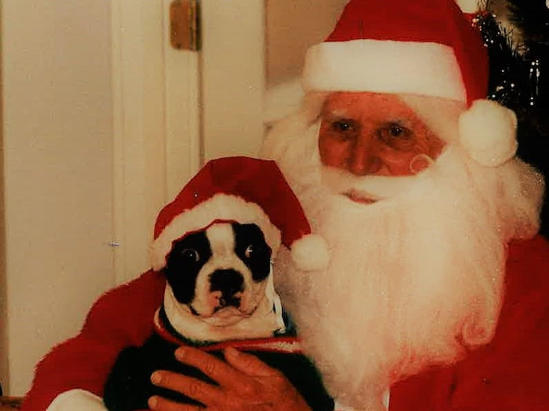 """Oscar the 3-year-old pet of John Mierzejewski of Grape Creek gets a photo with Santa during the """"Santa Claws"""" fundraiser for the San Angelo AIDS Foundation. More than 50 pets put on festive garb for the photo session on Nov. 28, 1993."""