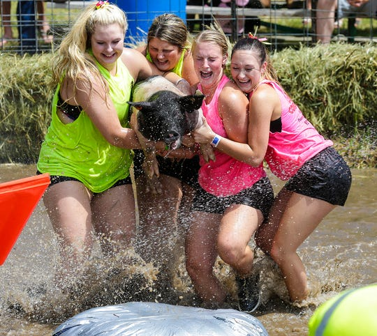 Teams of four people compete to get a pig on a barrel in the middle of a muddy water filled pen Saturday July 14, 2018, at the Eldorado Community Picnic. The team with the shortest time wins. Doug Raflik/USA TODAY NETWORK-Wisconsin