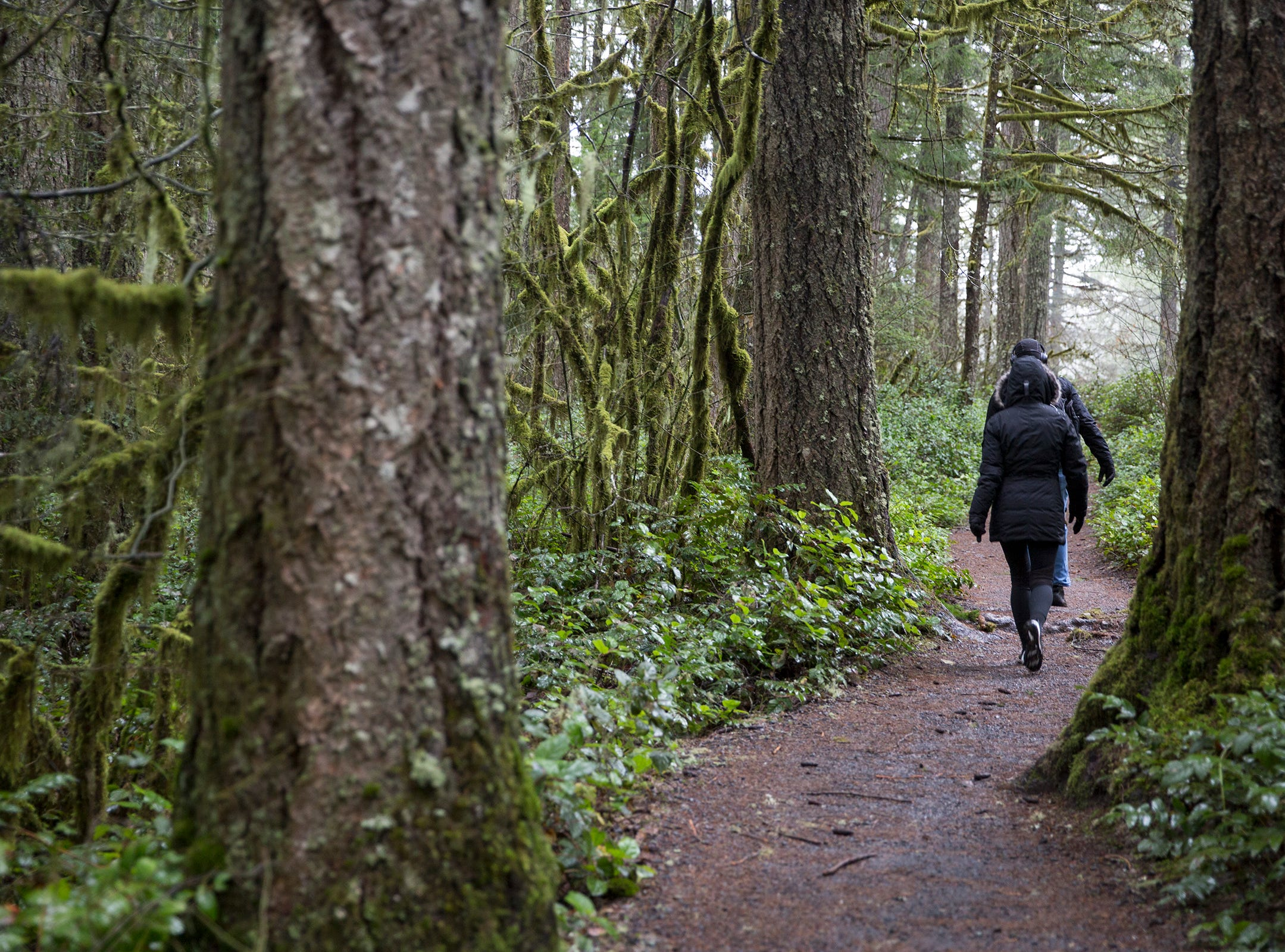 Hikers take the trail at Silver Falls State Park in Sublimity on Wednesday, Dec. 26, 2018.