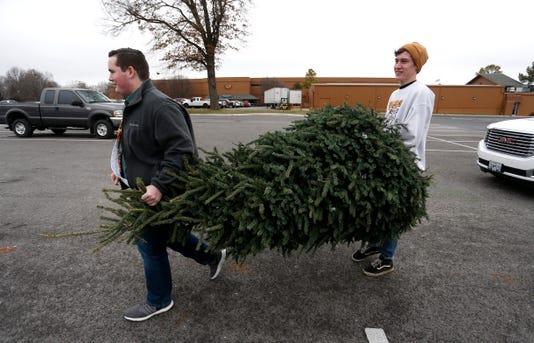 Springfield Christmas tree disposal