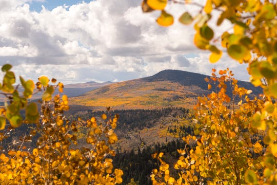 Fall foliage covers the landscape in Dixie National Forest Monday, October 1, 2018. By October, the Aspen trees at the highest altitudes have already dropped their leaves, and southern Utah starts to quickly change its colors.