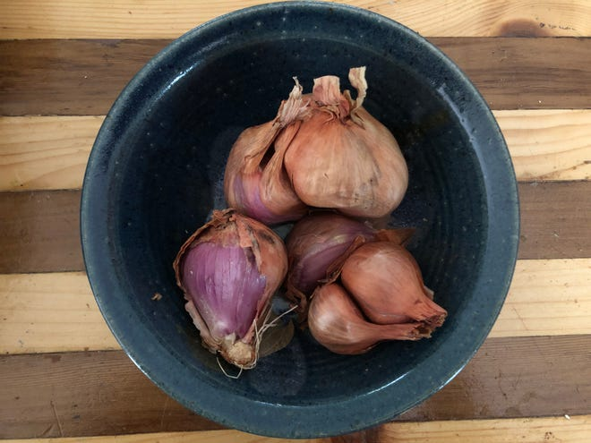 Shallots (Allium cepa, var. aggregatum) are a type of bunching onion with unique flavor.