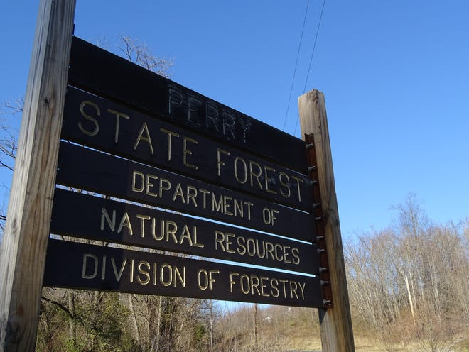 Perry State Forest