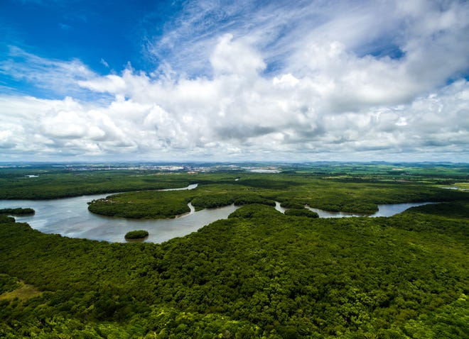 "The Amazon: Spanning nine countries, the Amazon rainforest contains unimaginable biodiversity and hundreds of indigenous communities. But massive deforestation in the name of cattle ranching and mining is assailing the ""lungs of the world,"" threatening not just the Amazon but the health of the planet as a whole."