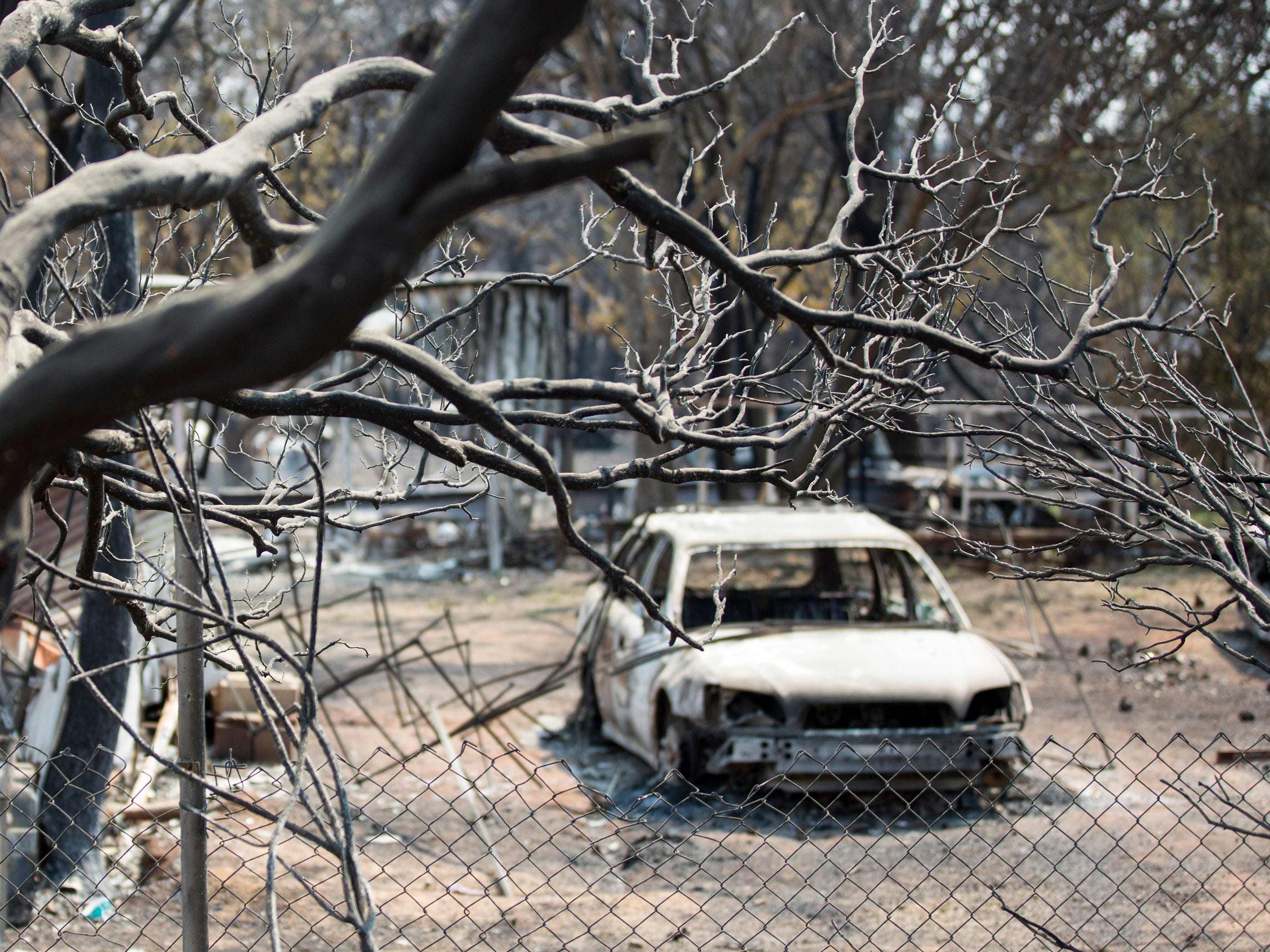 Blackened trees and the hulls of cars remain following the Carr fire which burned down all but 2 homes in Keswick, Calif., Tuesday, August 21, 2018.