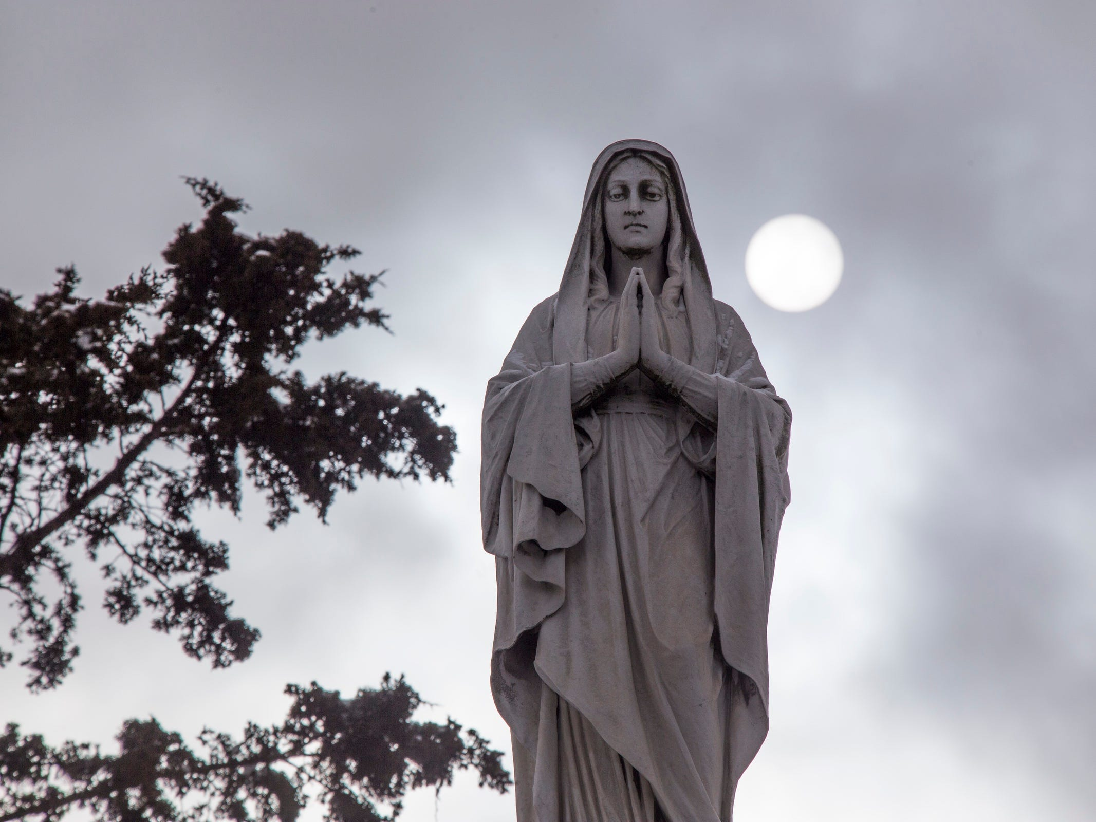 The Our Lady of Marygrove statue looks out from the Marygrove College campus. President Elizabeth Burns talks about the future of the college Monday Feb. 5, 2018.