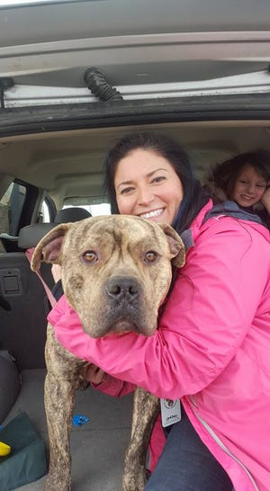 Alissa Sullivan with foster dog Buddy, which her neighbor adopted.