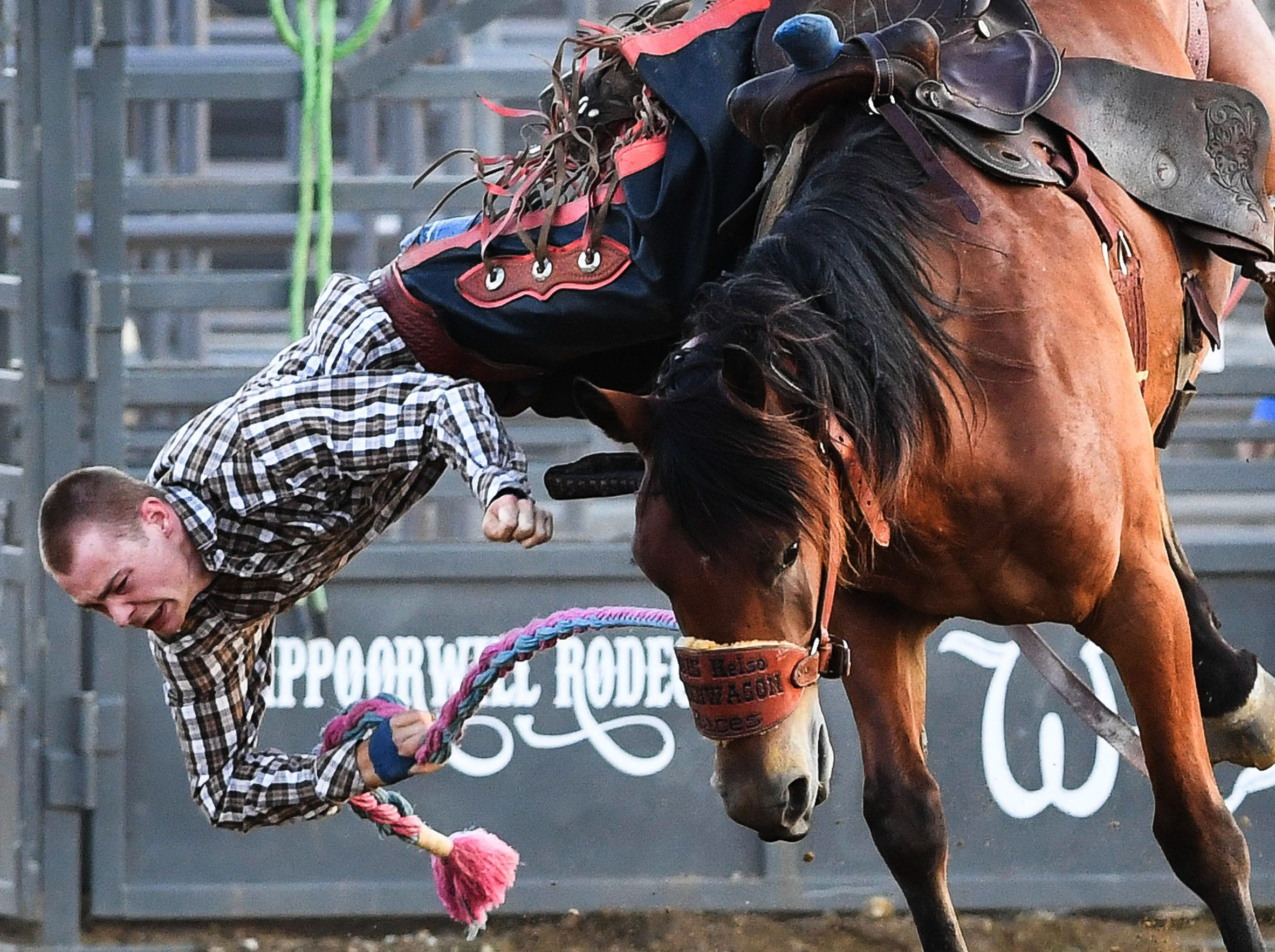 Caden Malloy loses his ride in the Ranch Bronc competition at the Henderson County Fair Rodeo Friday. Rodeo action continues Saturday at the fairgrounds on Sam Ball Way, July 6, 2018.