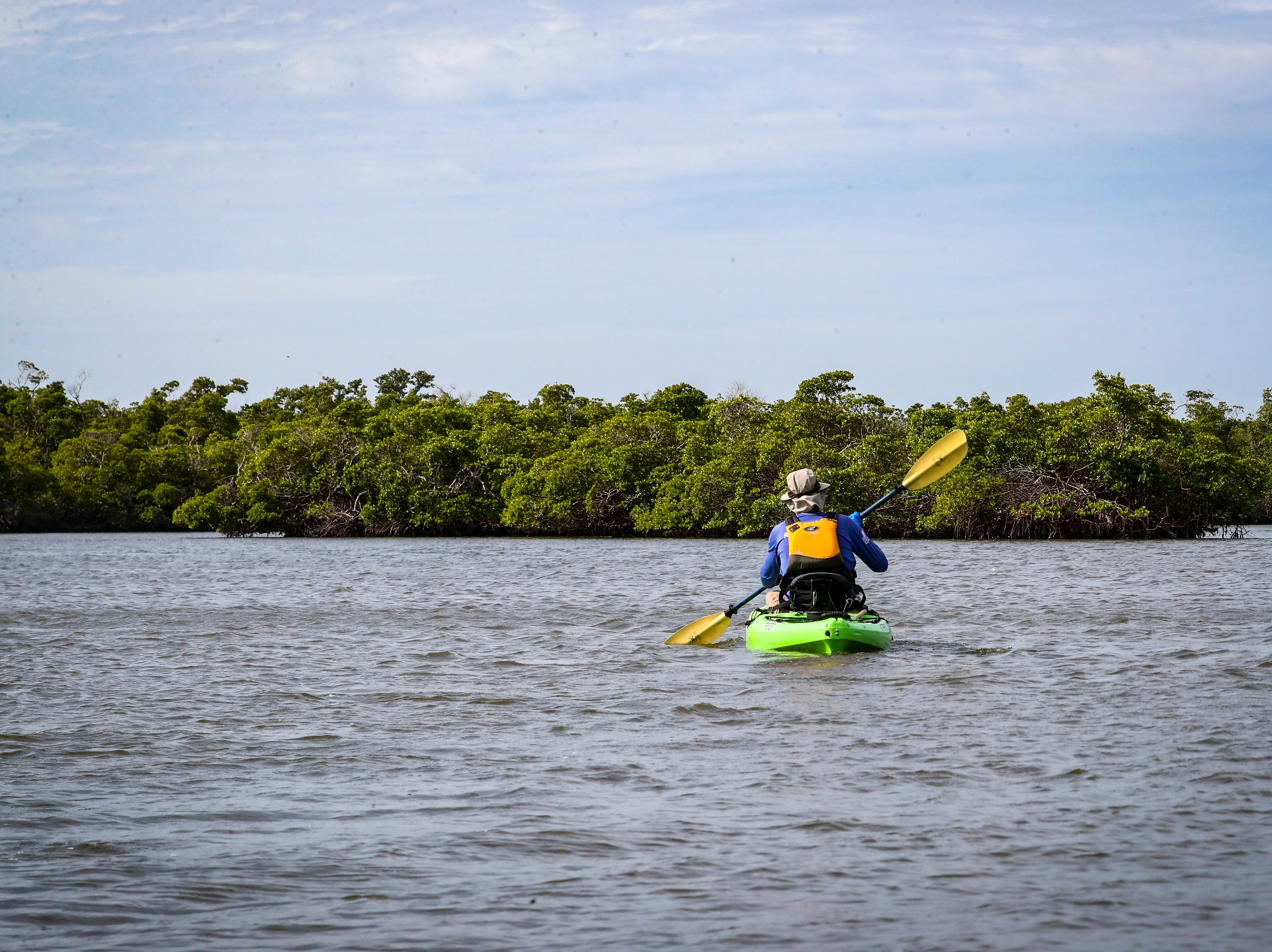Randy McCormick, captain and guide, leads the group out into the water. Rookery Bay National Estuarine Research Reserve in Naples offers a two-hour guided kayak tour of Rookery Bay. This tour provides an up-close and personal experience of this irreplaceable national treasure. Paddle through the shallows and maze like mangrove tunnels while learning about  surroundings from an experienced guide and naturalist. Randy McCormick, captain and guide, has worked at the Reserve for many years and knows the area intimately. He is a Certified Interpretive Guide, an instructor in the Florida Master Naturalist program and a fifth generation Floridian.