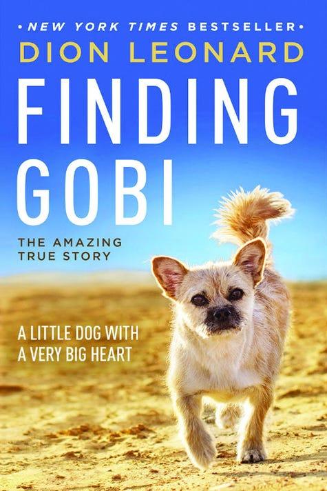 Lrt 2019 Finding Gobi Book Cover 2x3
