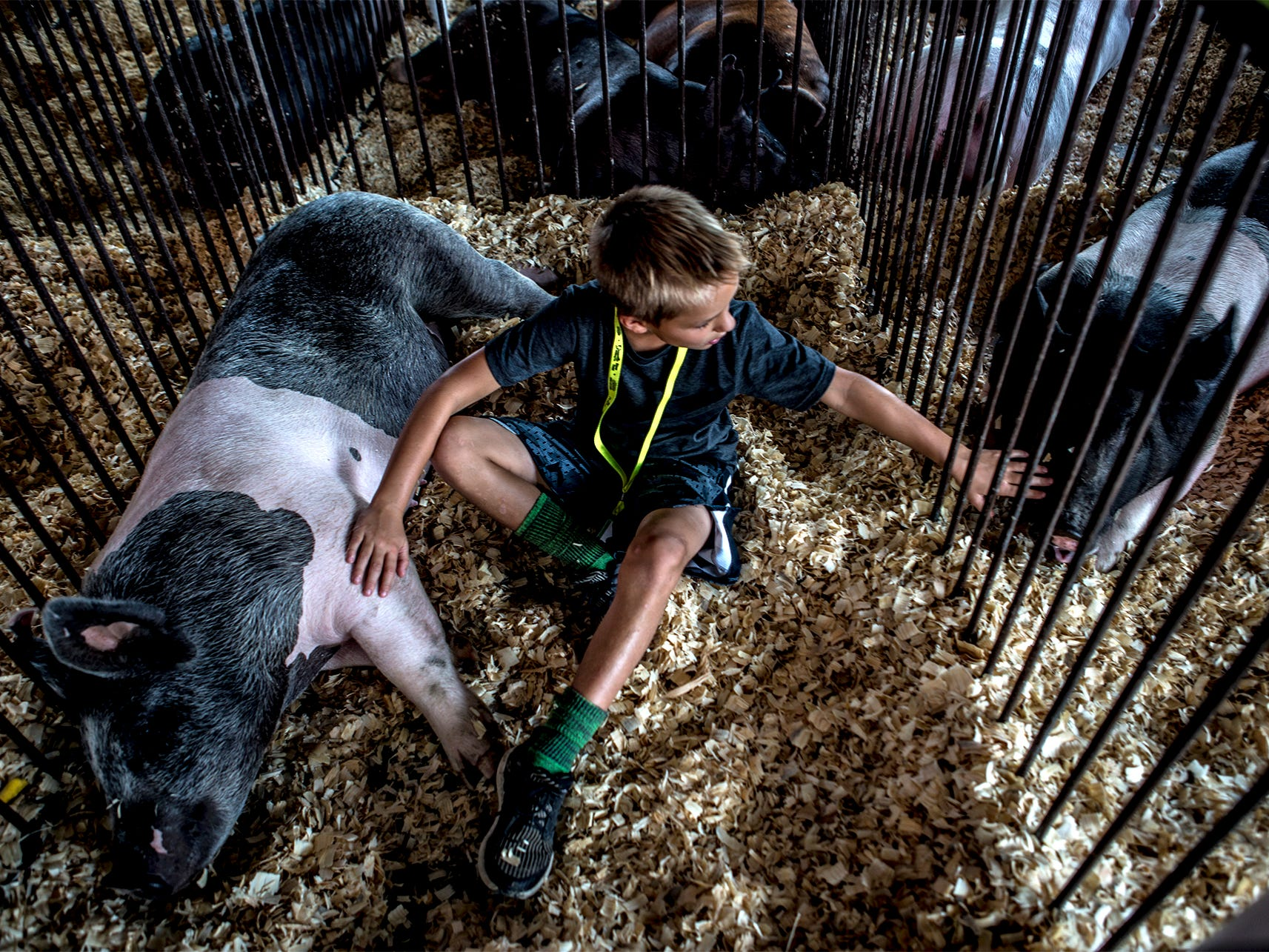 Ryder Lovejoy, 9, of Utica, sits with his pig Charlotte at the Hartford Fair. Saturday hundreds of kids moved in to the fairgrounds with their animals.