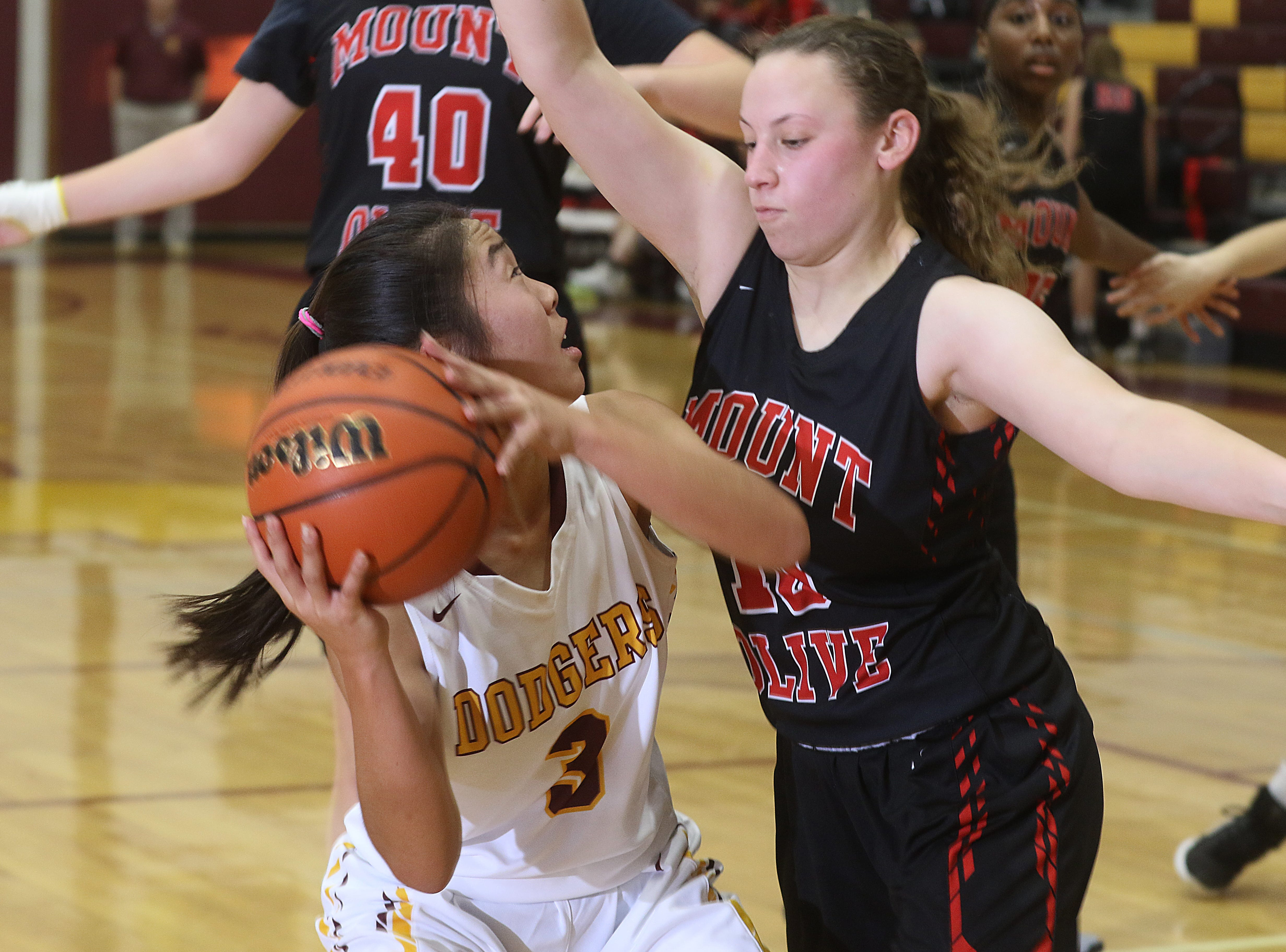 Sadie Kim of Madison is guarded by Gabby Grillo of Mount Olive in the first half.