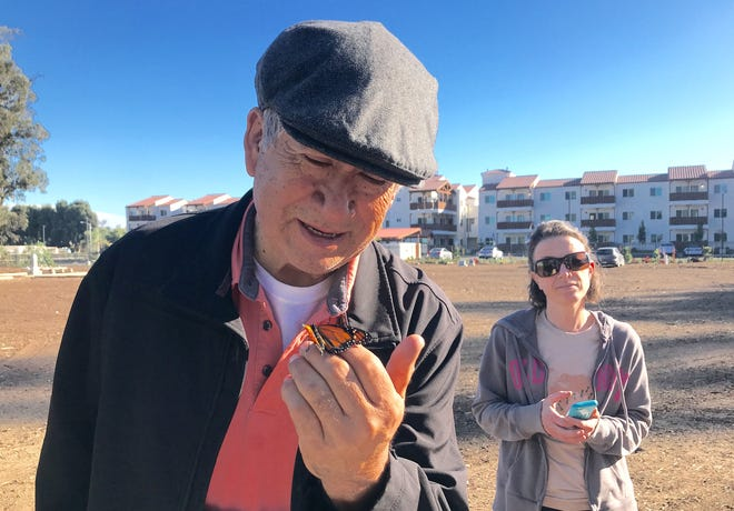 Robert Garcia, owner of the historic cemetery along Pleasant Valley Road, looks at a monarch butterfly before it's released into the wild.