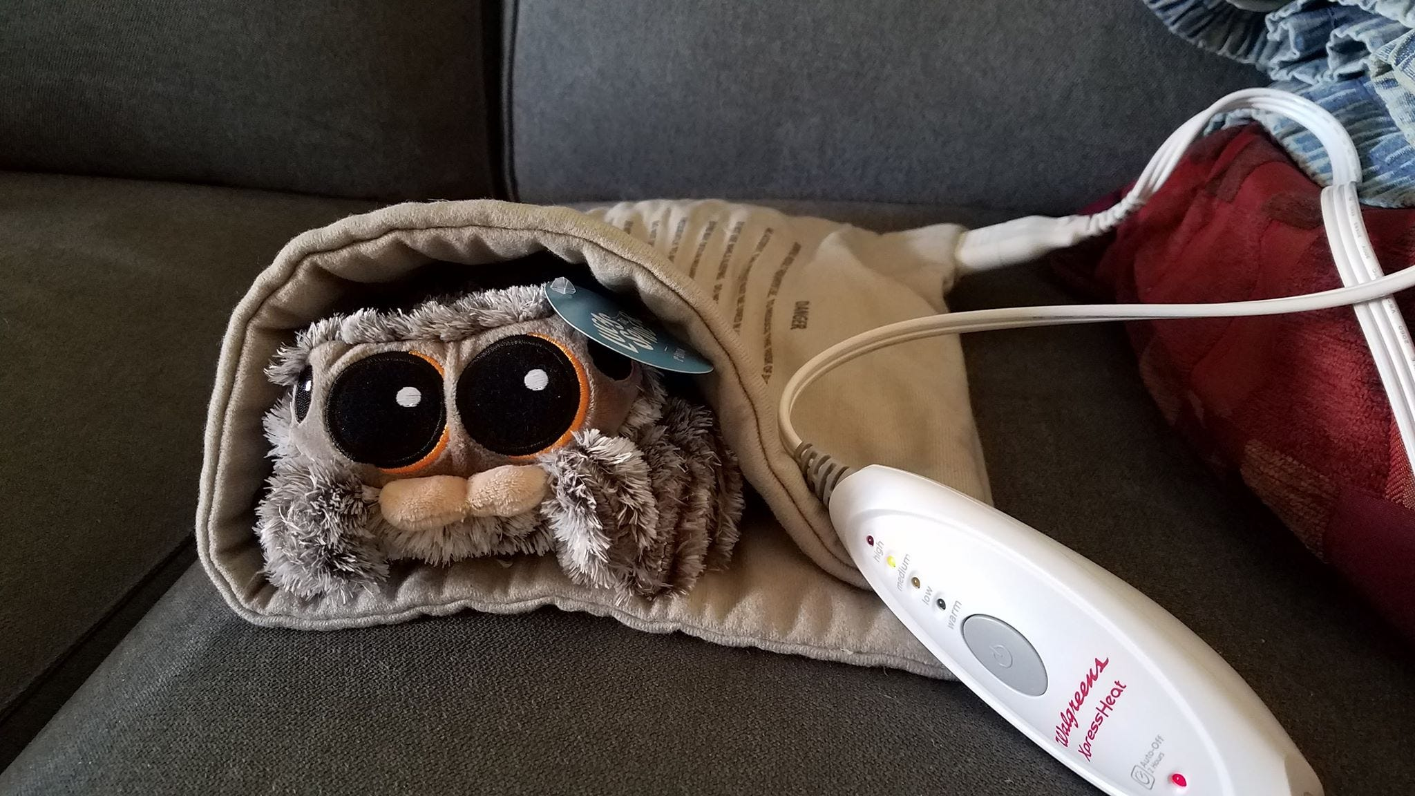 People Are Angry The Lovable Long Awaited Lucas The Spider Plushie
