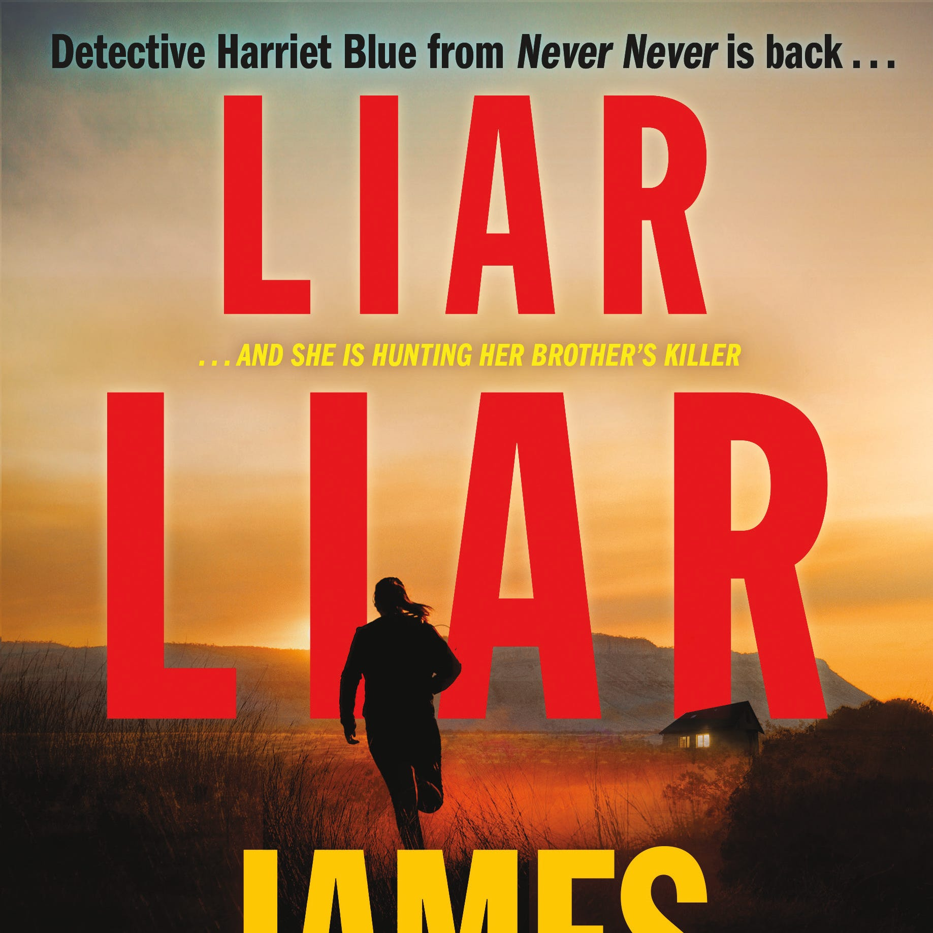 """""""Liar Liar"""" by James Patterson and Candice Fox"""