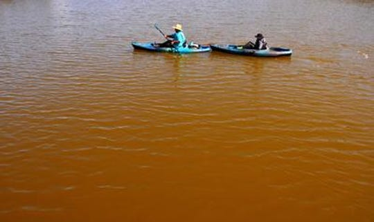 Kayakers on an ecotour of the Banana River with Cocoa Kayaking in August returned to the Minutemen Causeway from a tour. The river, brown with algae,  made the wildlife much less visible.