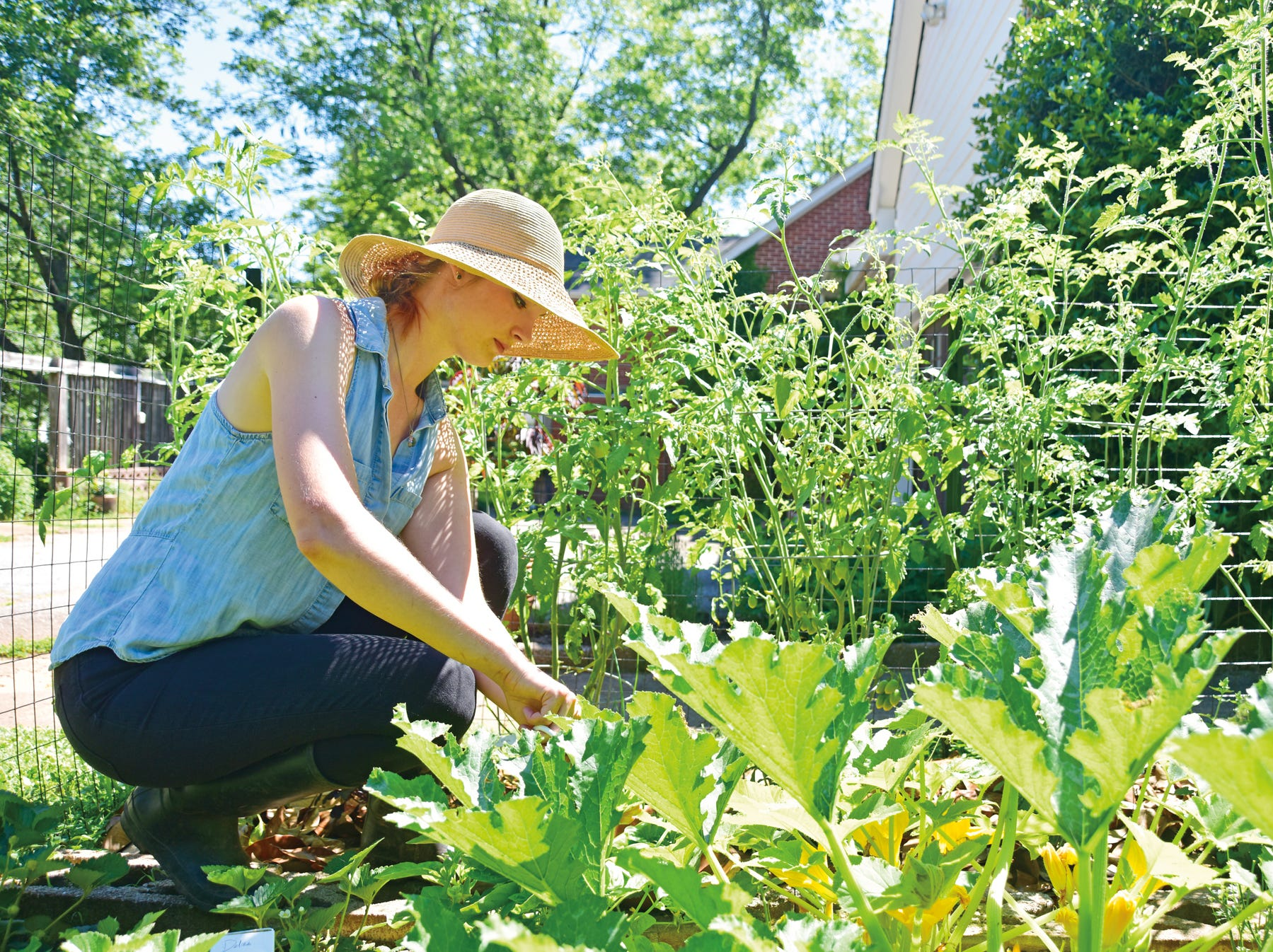 Tessa Pinner picks vegetables and herbs from her home garden in Greenville.