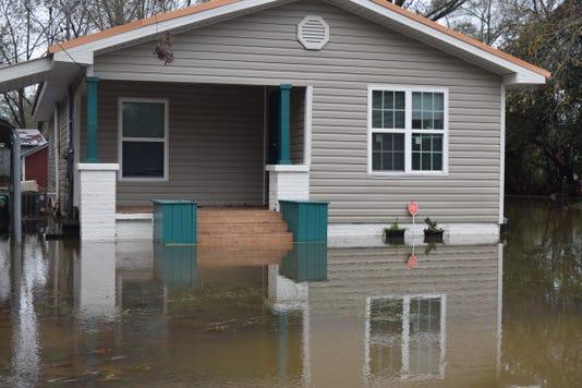 Petal flooding 3