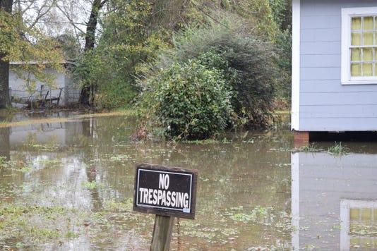 Petal flooding 4
