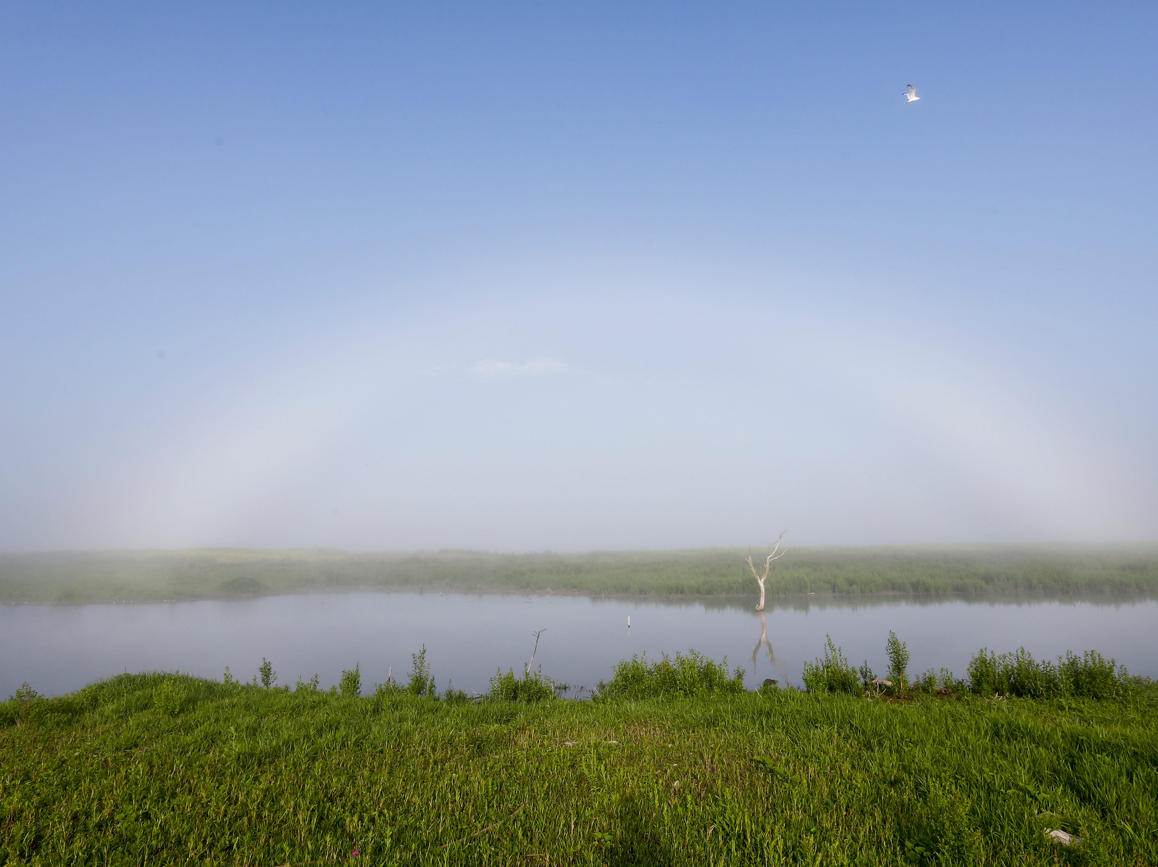 """A """"fogbow"""" forms over the containment area near the harbor Saturday, July 14, 2018, in Manitowoc, Wis. Josh Clark/USA TODAY NETWORK-Wisconsin"""