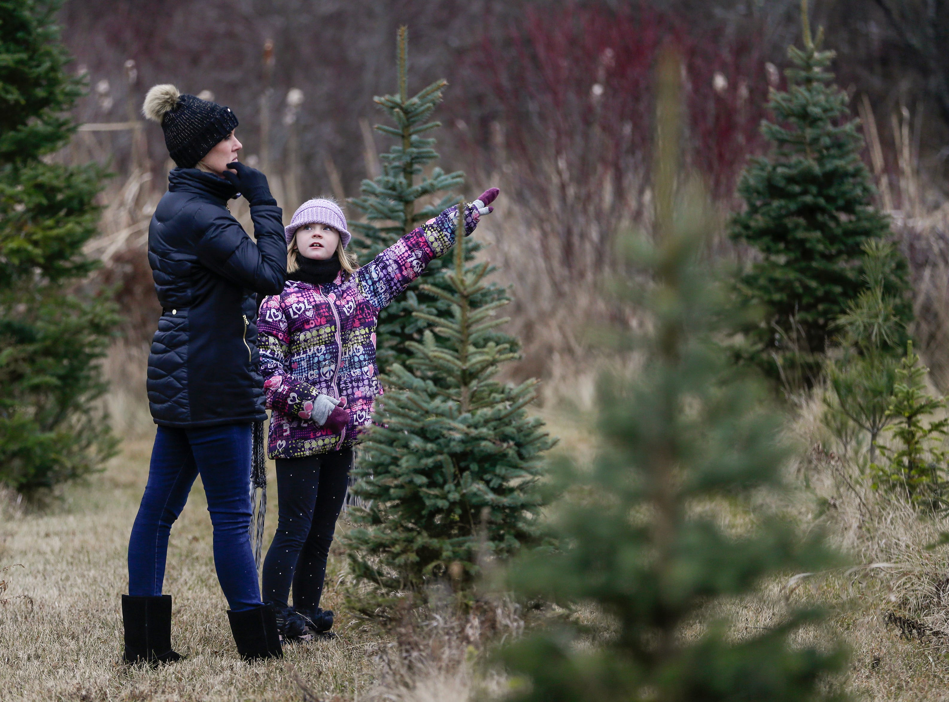 Brooklyn Zigmunt ,10, of Manitowoc, points out a tree to her mom Stephanie at Taylor Trees Saturday, December 1, 2018, in Mishicot, Wis. The Zigmunt family went looking across the entire tree farm until they found the perfect tree for the holidays. Joshua Clark/USA TODAY NETWORK-Wisconsin