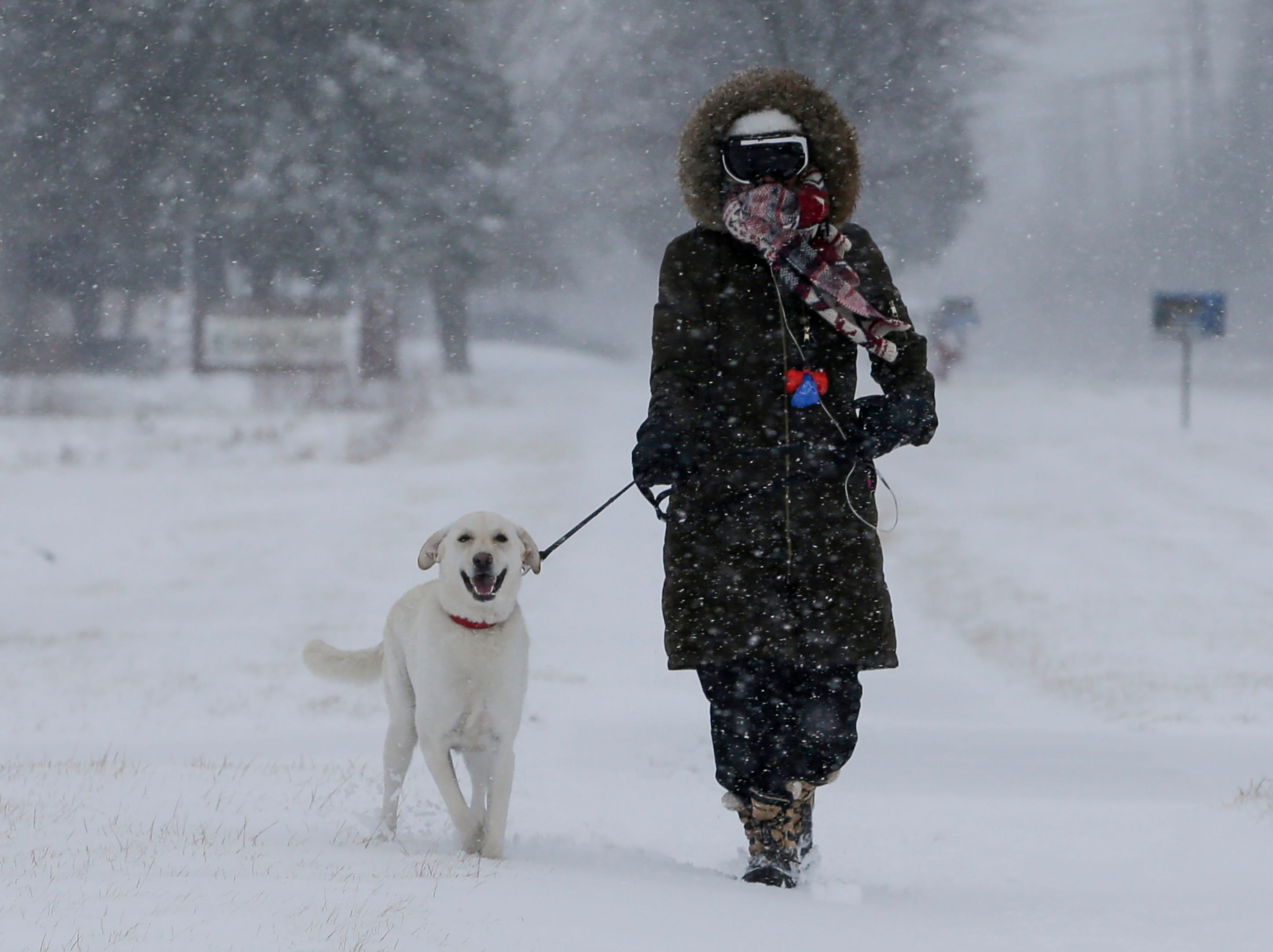 Alexa Walters battles heavy wind and snow while walking her dog Beau Tuesday, Apr. 3, 2018, in Manitowoc, Wis. Josh Clark/USA TODAY NETWORK-Wisconsin