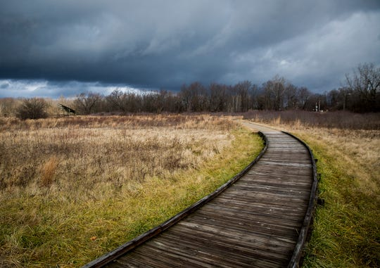 The John Craddock Wetland Preserve is separated from the former site of Indiana Steel & Wire by a section of railroad tracks.
