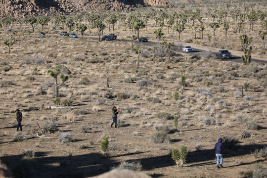 Visitors continue to flock to Joshua Tree National Park on Friday, December 28, 2018 despite it being unstaffed due to the government shutdown.
