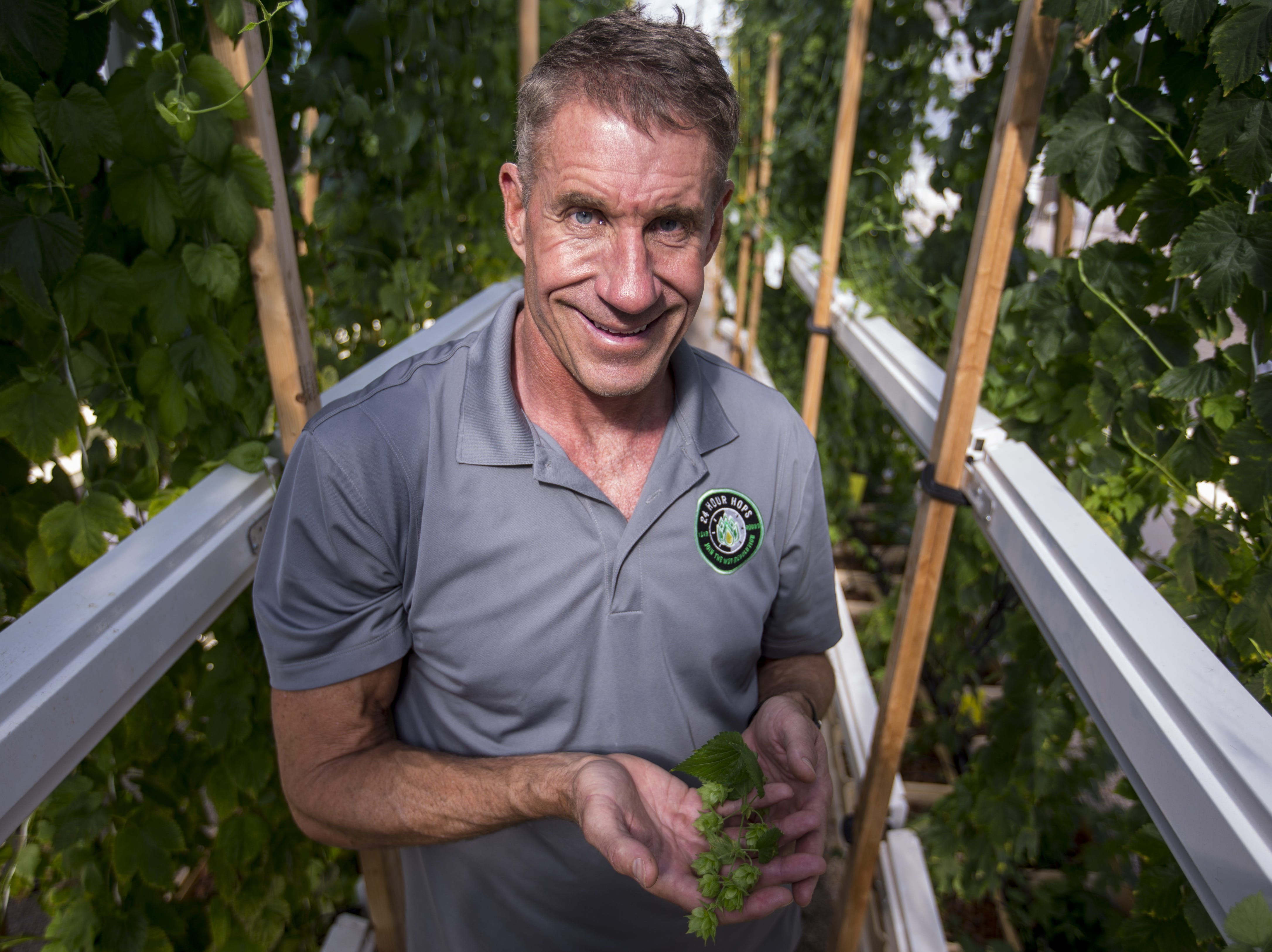 Greg Stelzer holds some hops in his greenhouse on Dec. 19, 2018, at 24 Hour Hops near Maricopa.
