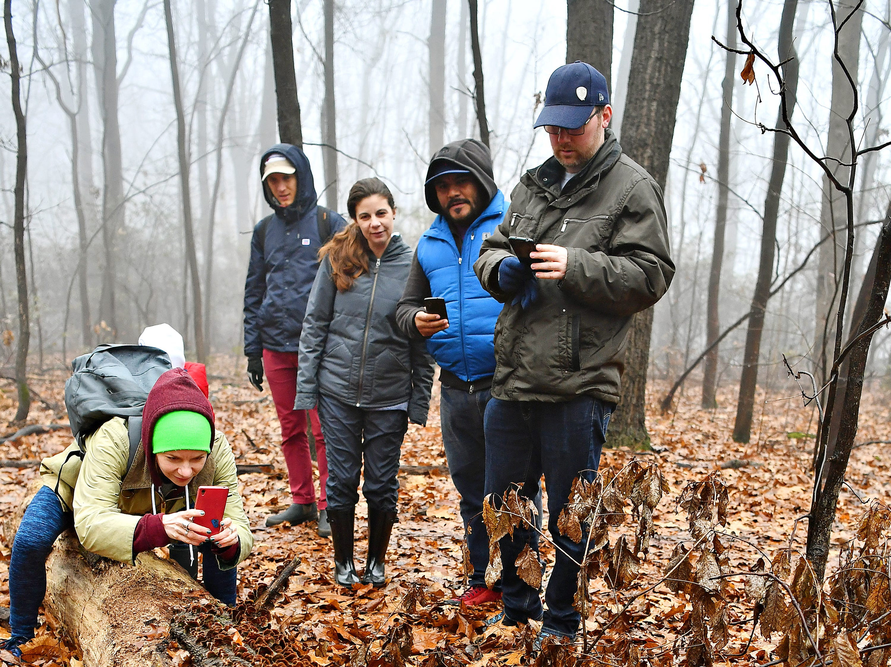 From left, Melanie Butler, and Josh Katz, both of Lancaster, Tiffany Butler and Manny Hernandez, both of Yucatan, Mexico, and Joel Butler, of Victoria, Canada, look on at a mushroom-covered tree trunk as York County Parks Naturalist Kelsey Frey leads a Marshmallow Hike at Rocky Ridge Park in Springettsbury Township, Friday, Dec. 28, 2018. The family traveled from Lancaster for the hike while on holiday. Dawn J. Sagert photo