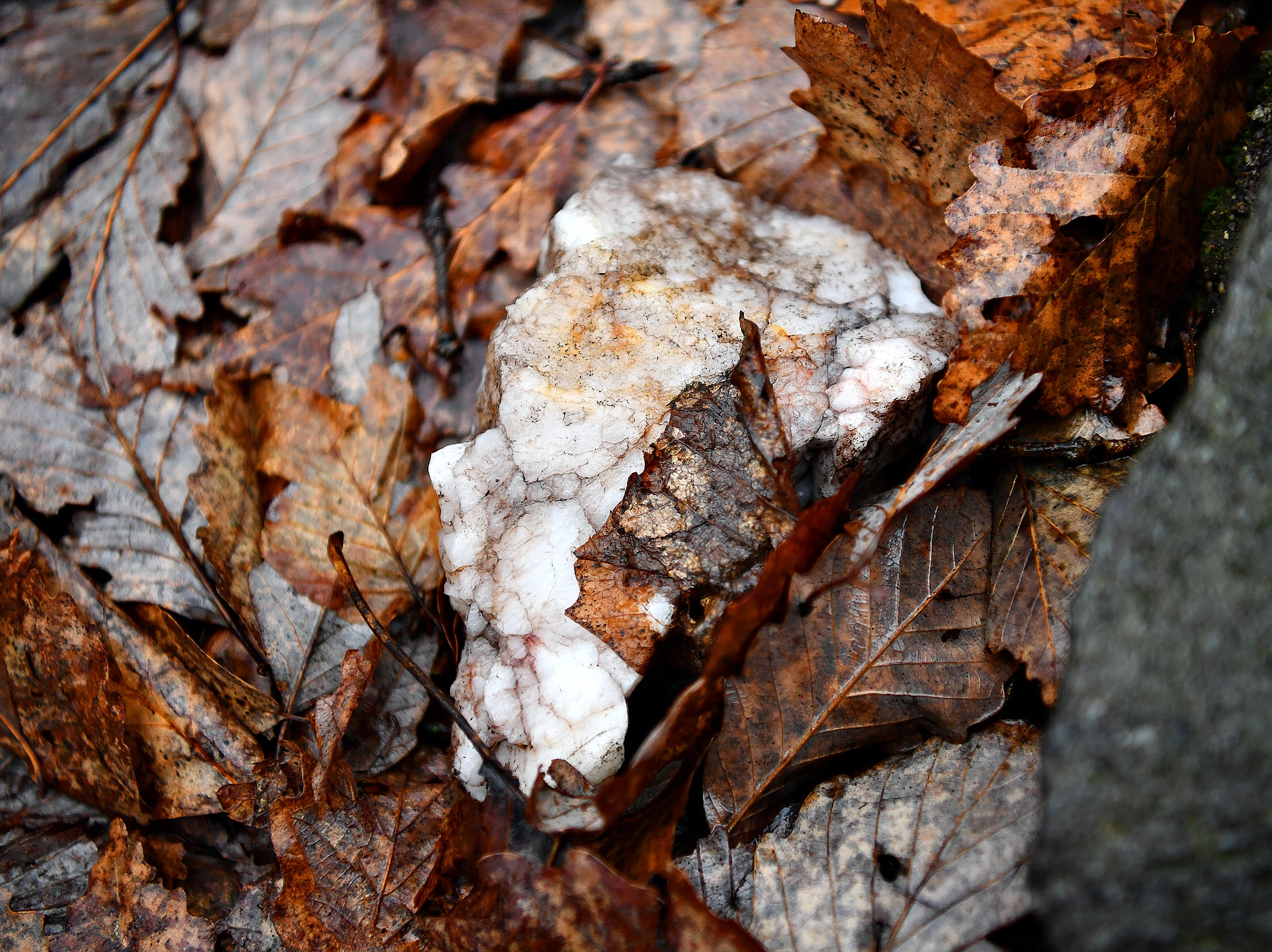 Quartz is seen during a Marshmallow Hike at Rocky Ridge Park in Springettsbury Township, Friday, Dec. 28, 2018. Dawn J. Sagert photo