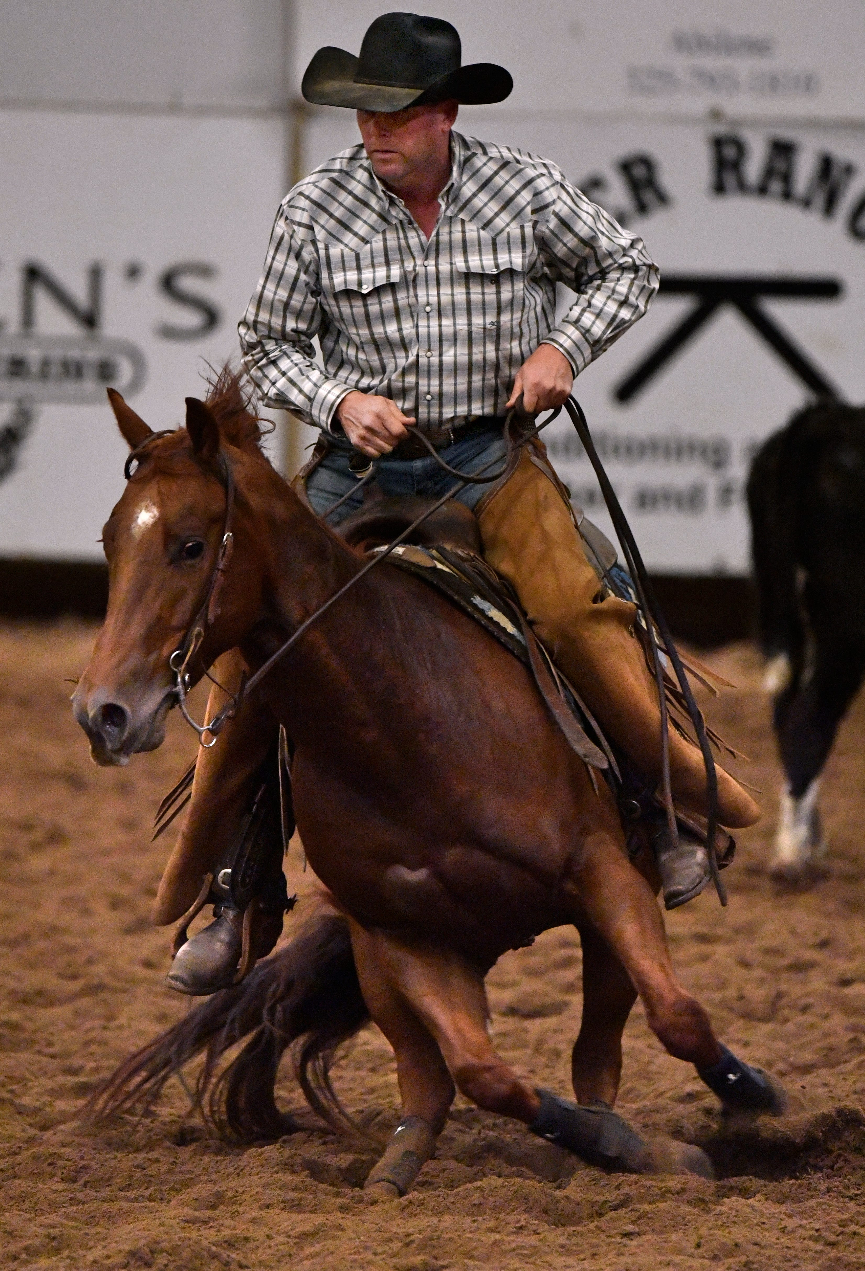 """Mackie Hursh of Colorado City nudges his mount to the right as horse and rider bob and weave to the left and right Friday at the Abilene Winter Circuit Cutting. A skill used by ranch hands around the world, """"cutting"""" is the practice of separating one calf from the herd and then keeping it from returning."""