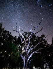 Stars rise over the Kissimmee River and Chain of Lakes.
