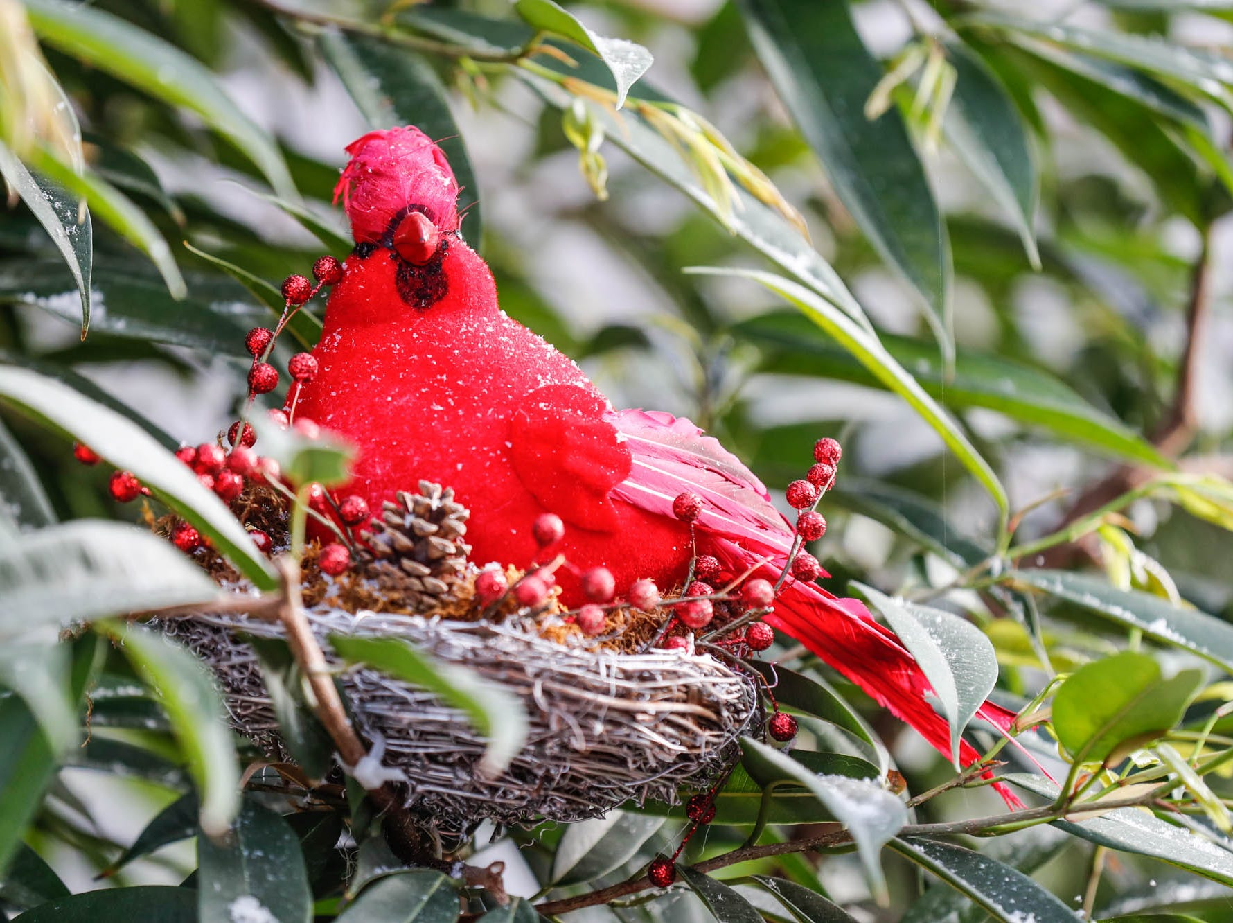 A for cardinal nests in a tree in the Conservatory Crossing holiday display at the Garfield Park Conservatory on Saturday, Dec. 29, 2018.