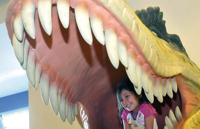 """The Museum of Nature & Science presents, """"Dino Days""""January 2-4from 10 a.m. to 11 a.m."""