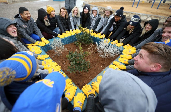 University of Pittsburgh staff and coaches spouses pose around a planter with their yellow Pitt gloves after planting shrubs there in the playground area of Veterans Park in Northeast El Paso Friday. Pitt athletic director Heather Lyke said they wanted to give back to the community for the hospitality they have received.