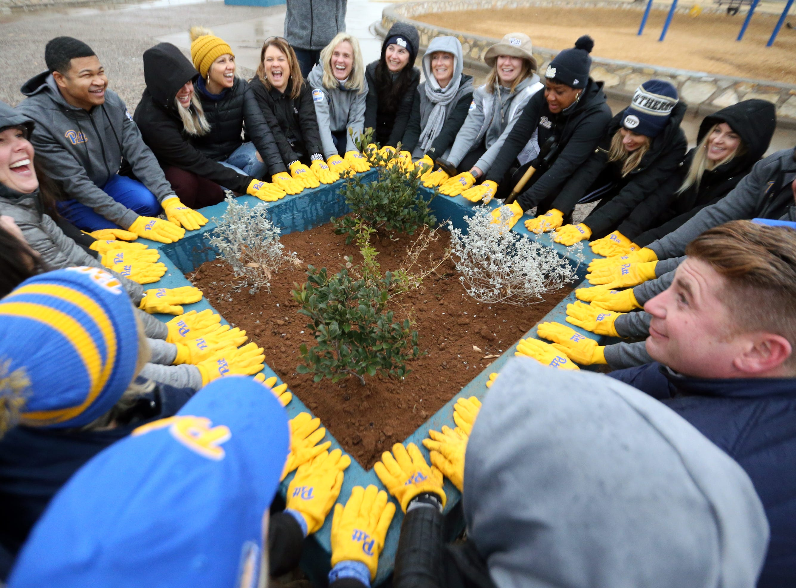 University of Pittsburgh athletic department staff and spouses from the coaching staff pose around a planter with their yellow Pitt gloves after planting shrubs there in the playground area of Veterans Park in Northeast El Paso Friday. Pitt athletic director Heather Lyke said they wanted to give back to the community for the hospitality they have been shown.