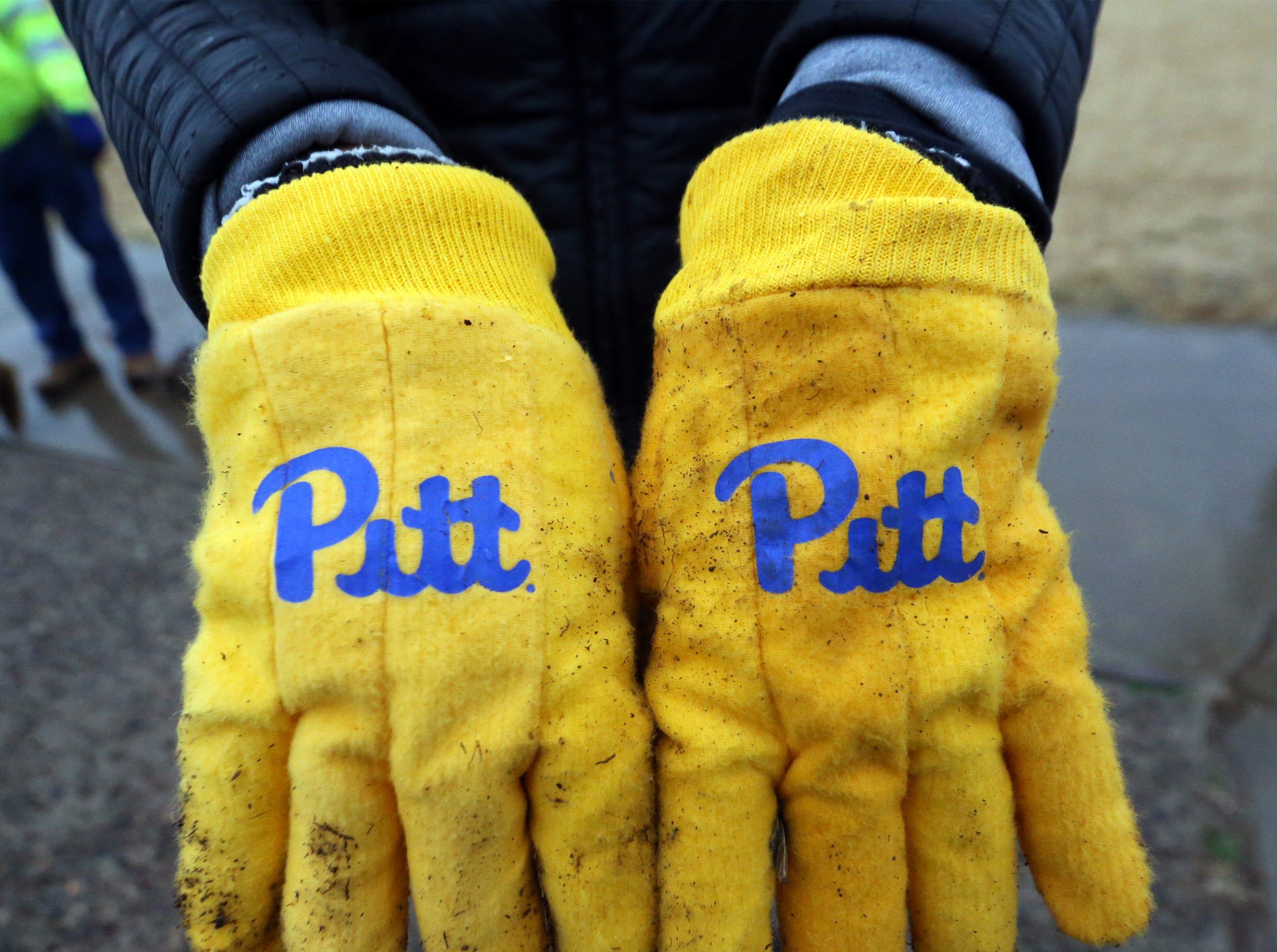 Pitt garden gloves during a volunteer project at Veterans Park in Northeast El Paso Friday.