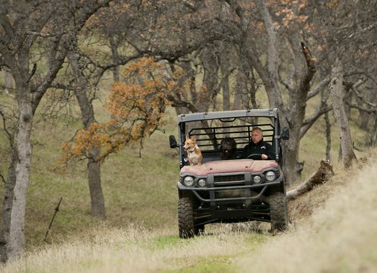 In this Dec. 22 photo, Gov. Jerry Brown tours his Colusa County ranch accompanied by his dogs, Colusa, left, and Cali. Brown leaves office Jan. 7 after a record four terms in office, from 1975-1983 and again since 2011.