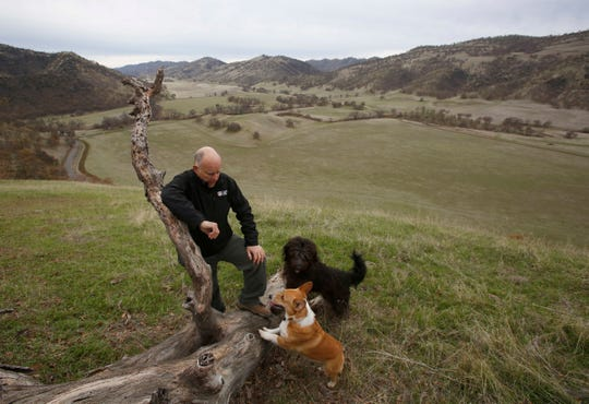 In this Dec. 22 photo, Gov. Jerry Brown pauses while taking a walk with his dogs Colusa, center, and Cali, right, on his Colusa County ranch.