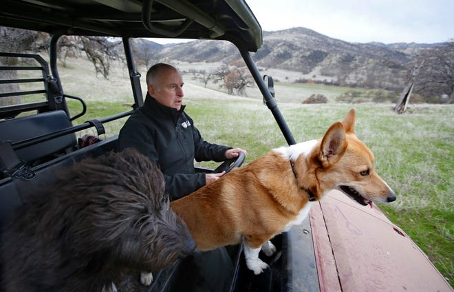 In this Dec. 22 photo, Gov. Jerry Brown tours his Colusa County ranch accompanied by his dogs Cali, left, and Colusa. Brown will retire to the ranch when he leaves office Jan. 7 after a record four terms in office, from 1975-1983 and again since 2011.