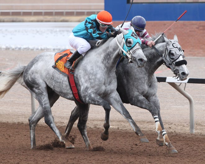 Susans Violette, who edges Tijuana in Saturday's 5 and 1/2 furlong new Mexico State Racing Commission Handicap at Sunland Park Racetrack & Casino.